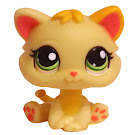 Littlest Pet Shop Multi Pack Kitten (#1649) Pet