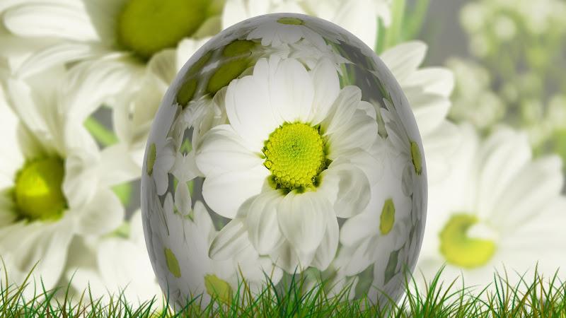 The Big Easter Egg HD