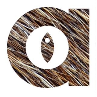 Animalist Kodi XBMC Addons Install Metalchris