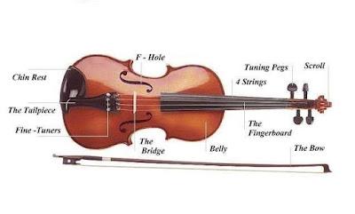 Cấu tạo của đàn Violin