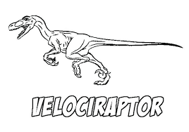 Velociraptor Coloring Pages With Name