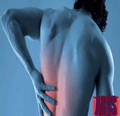manfaat daun sirsak untuk mengobati sakit punggung