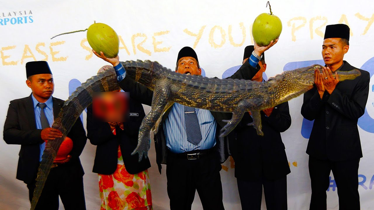 Daeng Selili Return: Tanda Tanda Manusia Disihir?