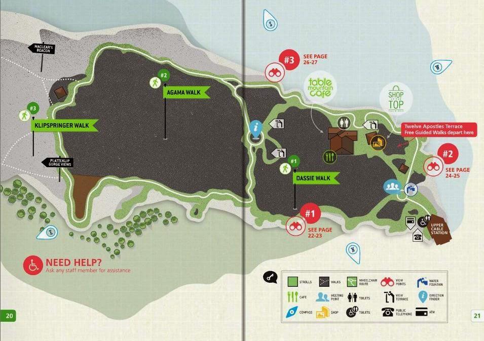 trilhas da Table Mountain