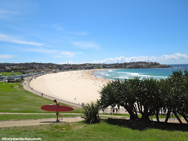 picture of overview of bondi beach and the grass