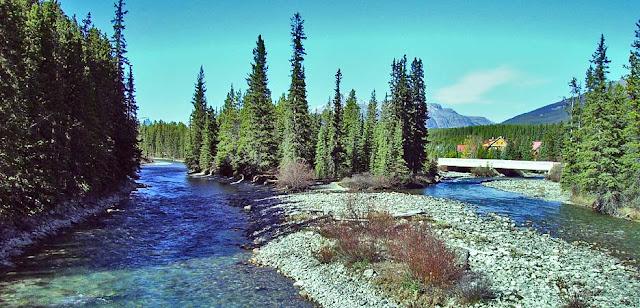 Der Bow River bei Banf