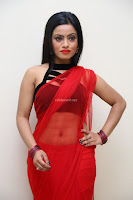 Aasma Syed in Red Saree Sleeveless Black Choli Spicy Pics ~  Exclusive Celebrities Galleries 103.jpg