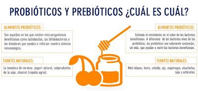 Definición prebióticos probióticos