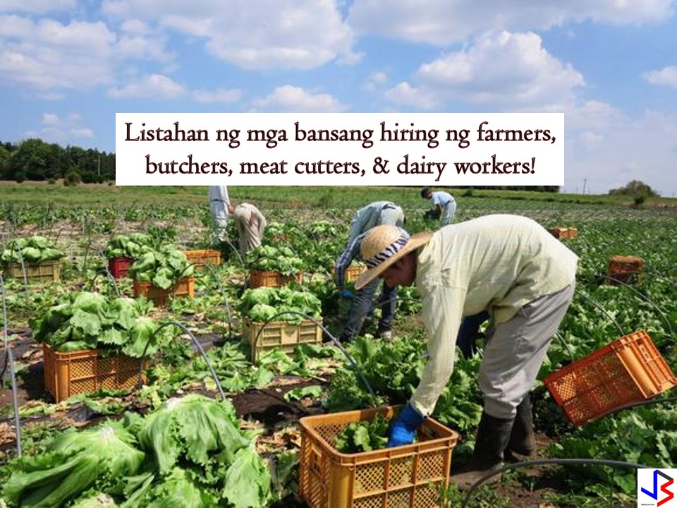 The following are agricultural-related jobs abroad where you can apply this August 2018. These are the latest list of approved jobs from the website of the Philippine Overseas Employment Administration (POEA). If you want to work abroad as a farmer, butcher, meat cutter or dairy worker, this post is intended for you!   Please reminded that jbsolis.com is not a recruitment agency, and all information in this article is taken from POEA job posting sites and posted for the general information of the public.  The contact information of recruitment agencies is also listed. Just click your desired jobs to view the recruiter's info where you can ask a further question and send your application. Any transaction entered with the following recruitment agencies is at applicants risk and account.