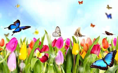 Imagen al Día de la primavera de flores y mariposas