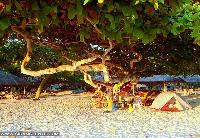 samal island photos