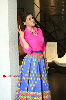 Actress Mannar Chopra in Pink Top and Blue Skirt at Rogue movie Interview  0025.JPG