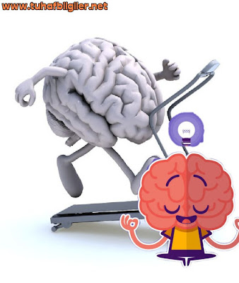 beynimizi iyi kullanma