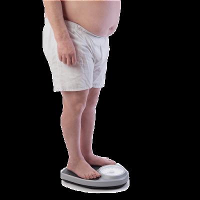 fiforlif menurunkan berat badan