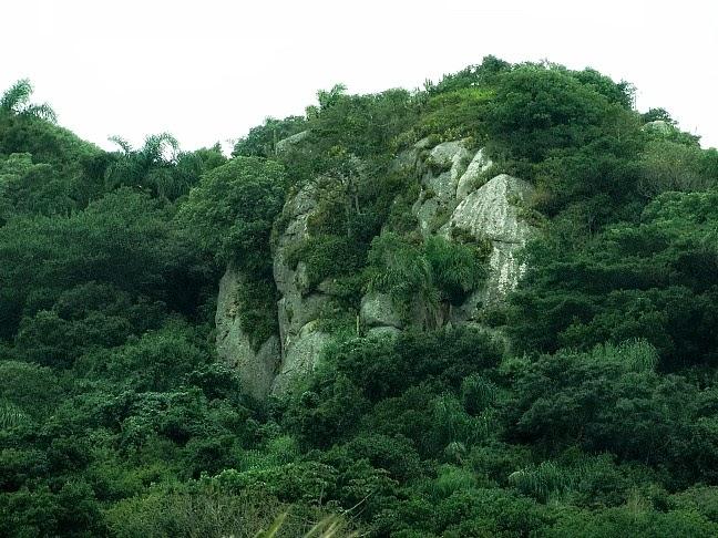 Pedra do Urubu em meio à vegetação no alto do Morro do Urubu, em Palhoça