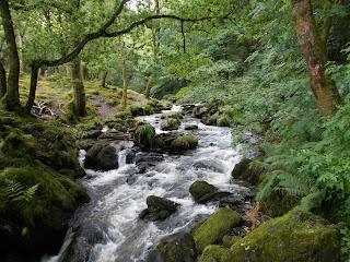 river in snowdonia