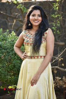 Actress Nayana Nair Stills in Long Dress at Arasakulam Tamil Movie Audio Launch  0003.jpg
