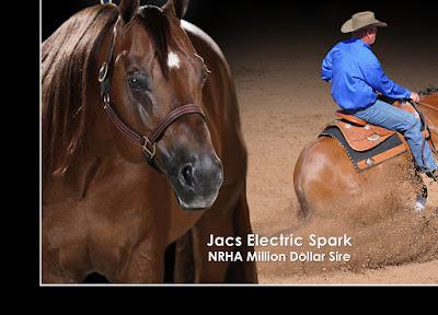 http://www.heikesquarterhorses.com/