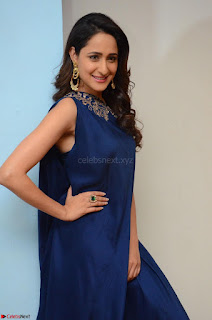 Pragya Jaiswal in beautiful Blue Gown Spicy Latest Pics February 2017 001.JPG