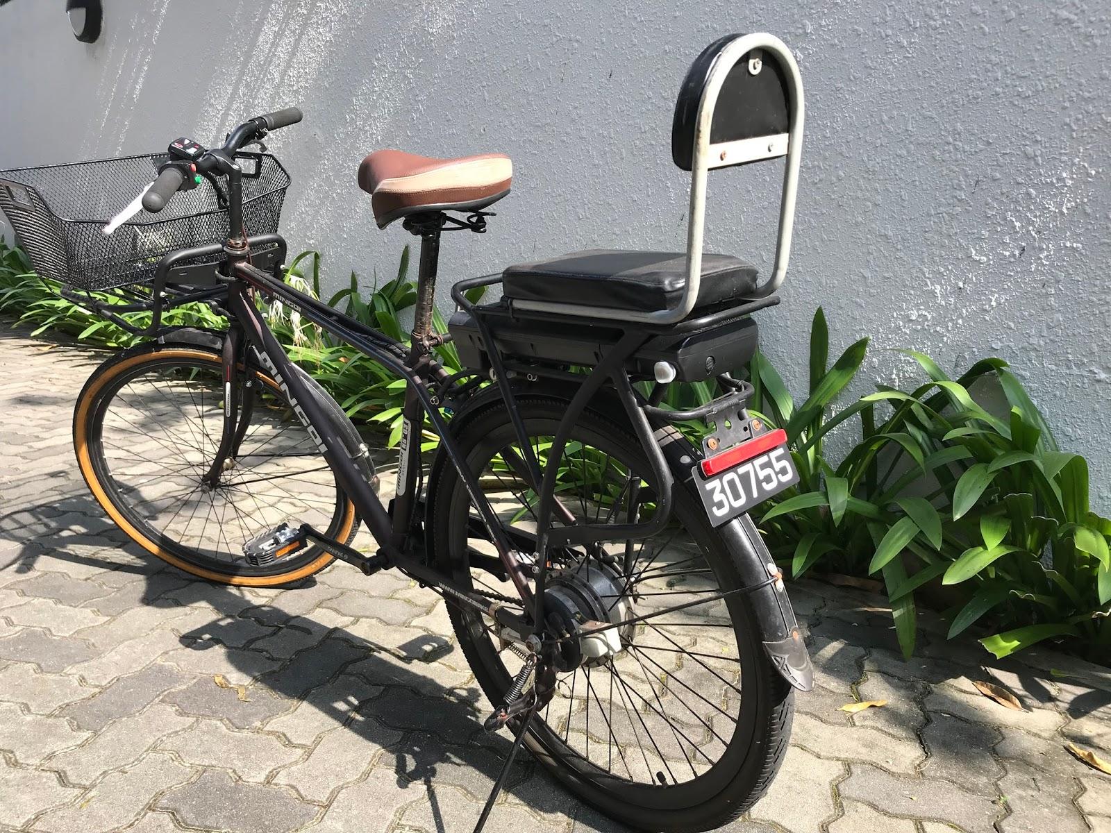 plaque min ralogique pour e bike un zeste de singapour. Black Bedroom Furniture Sets. Home Design Ideas