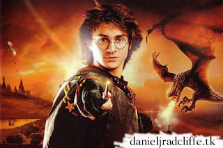 Harry Potter and the Goblet of Fire video game artwork