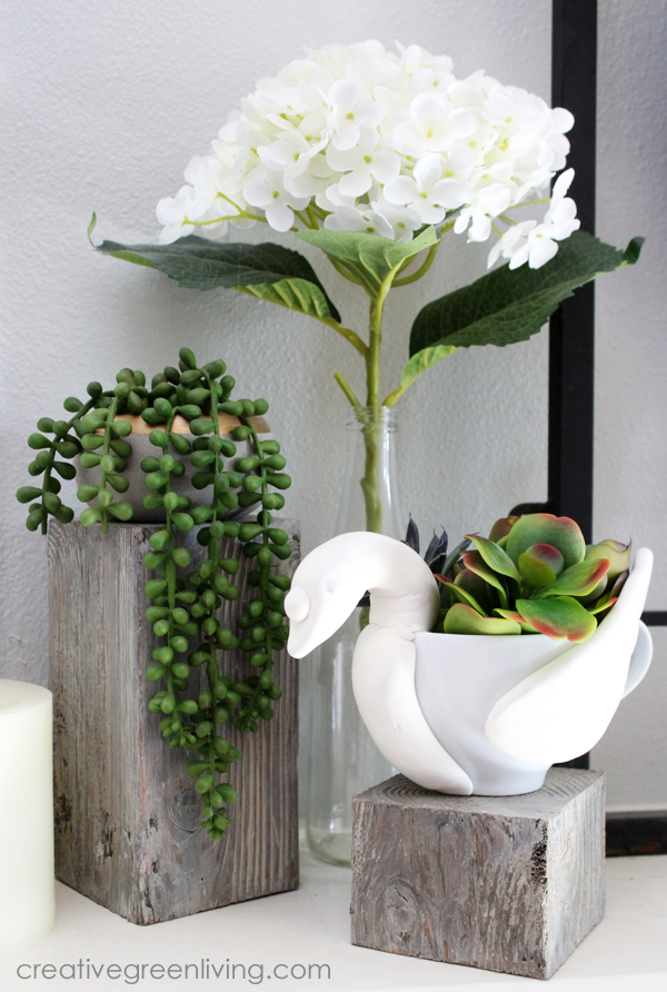 How to make a succulent planter that looks like a swan