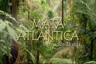 Mata Atlântica e os Ciclos da Vida – HDTV AVI Dublado