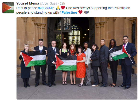 Image result for jo cox palestine