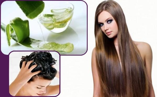 Aloe vera para el pelo como usarlo