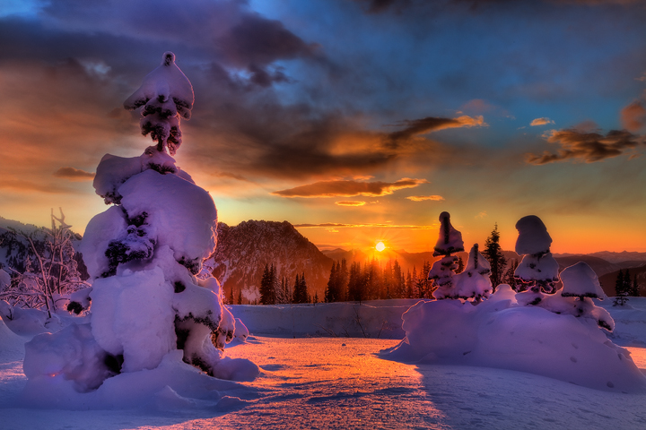 The best photos of Winter