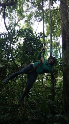 vine swinging - Tombopato Reserve, Peru