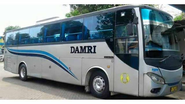 Damri Malang Palembang | Palembang Malang, Berikut Info Lengkapnya