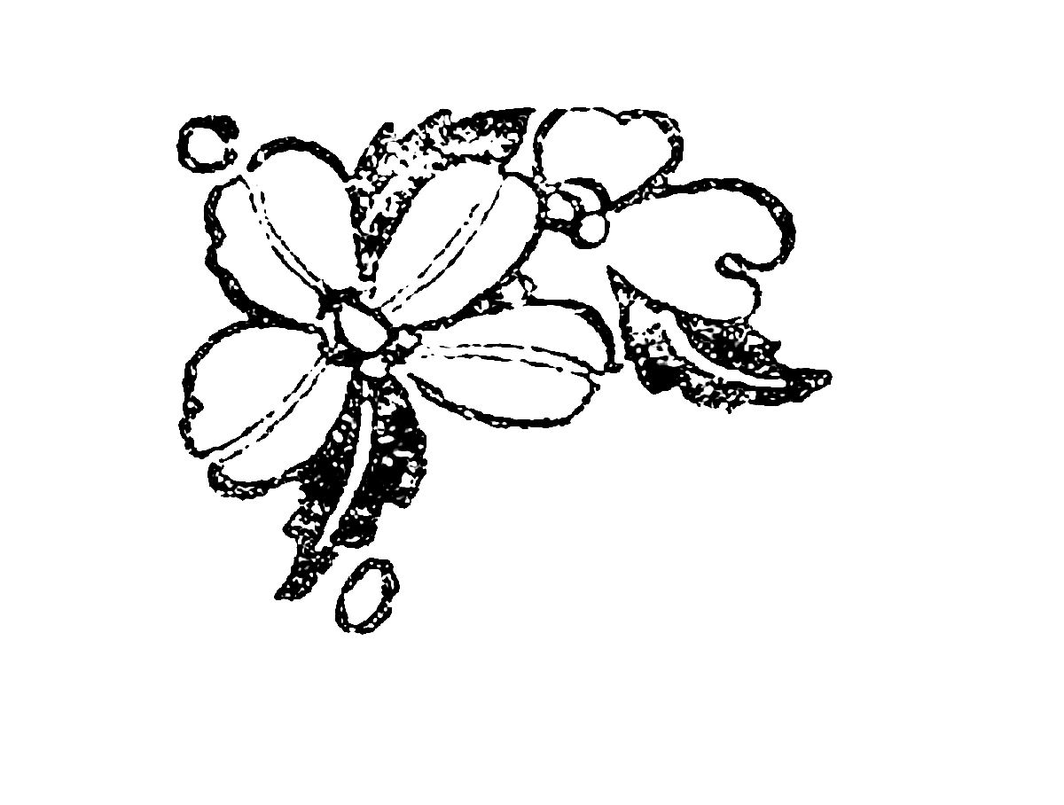 Digital Stamp Design Distressed Flower Illustration