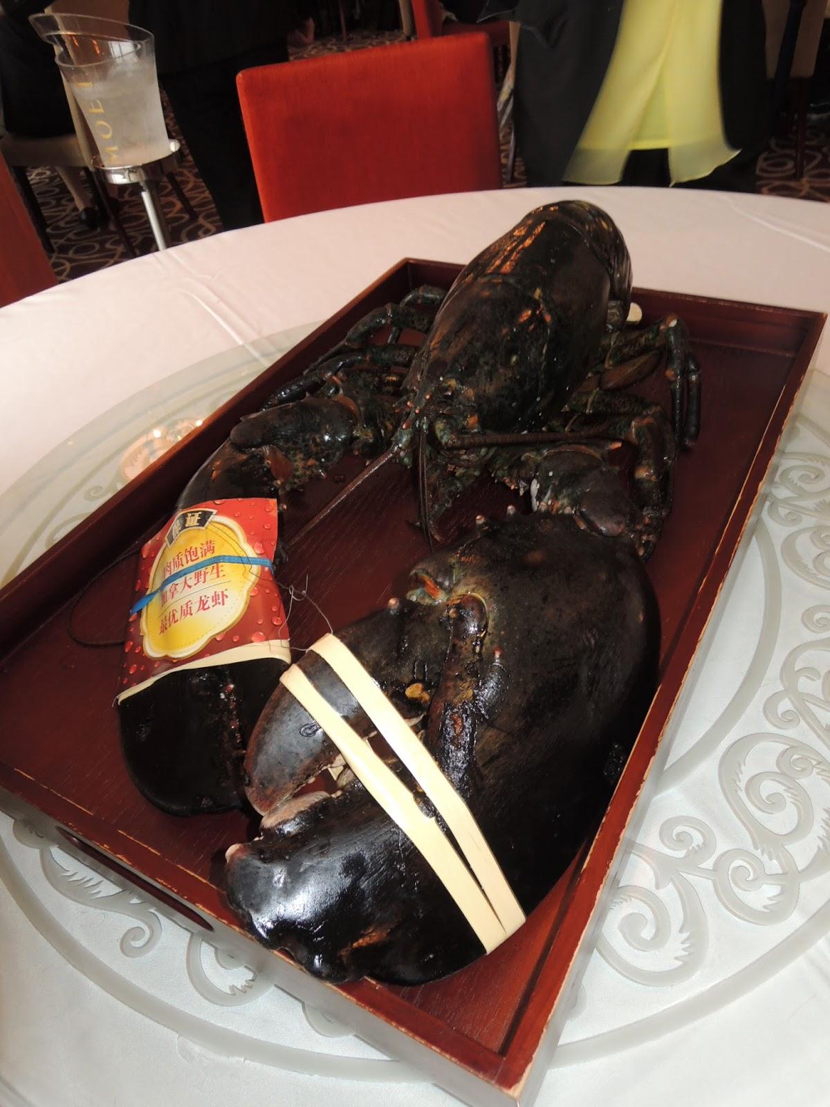 余江強: 加拿大金牌龍蝦
