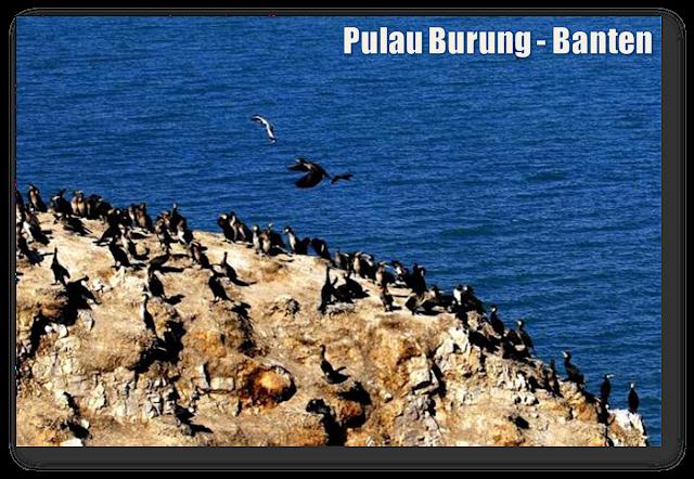 Pulau Burung - Banten