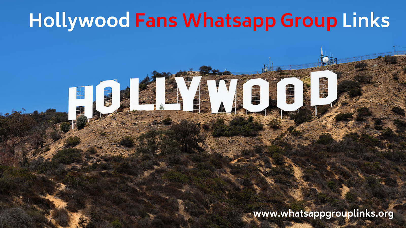 Join Hollywood Whatsapp Group Links List - Whatsapp Group Links
