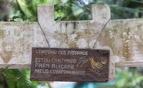 Imagem do Cemitério dos Pássaros
