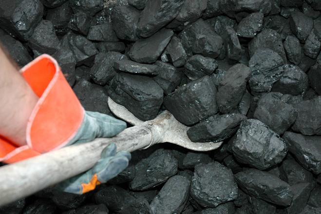 Why Coal Petroleum And Natural Gas Are Called Fossil Fuels