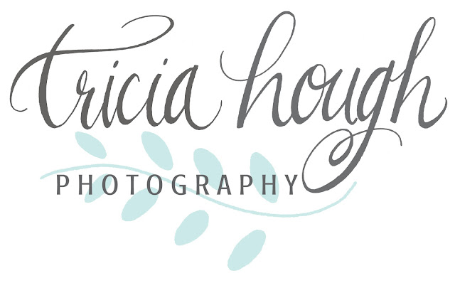hand lettering, logos, photography logo, logo design, tricia hough photography