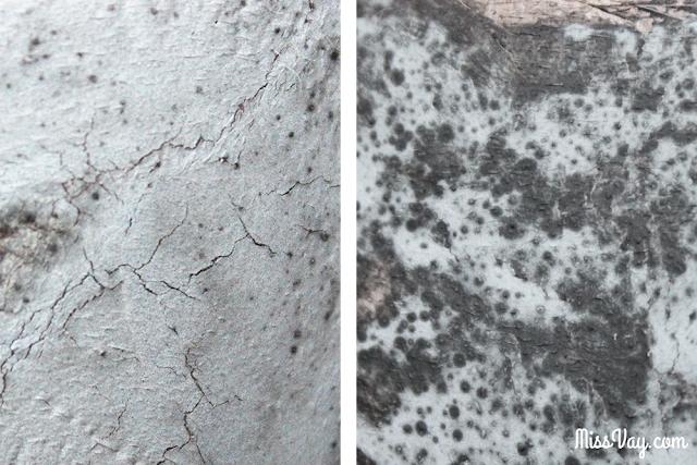 Masque au charbon actif détoxifiant Adore Cosmetics