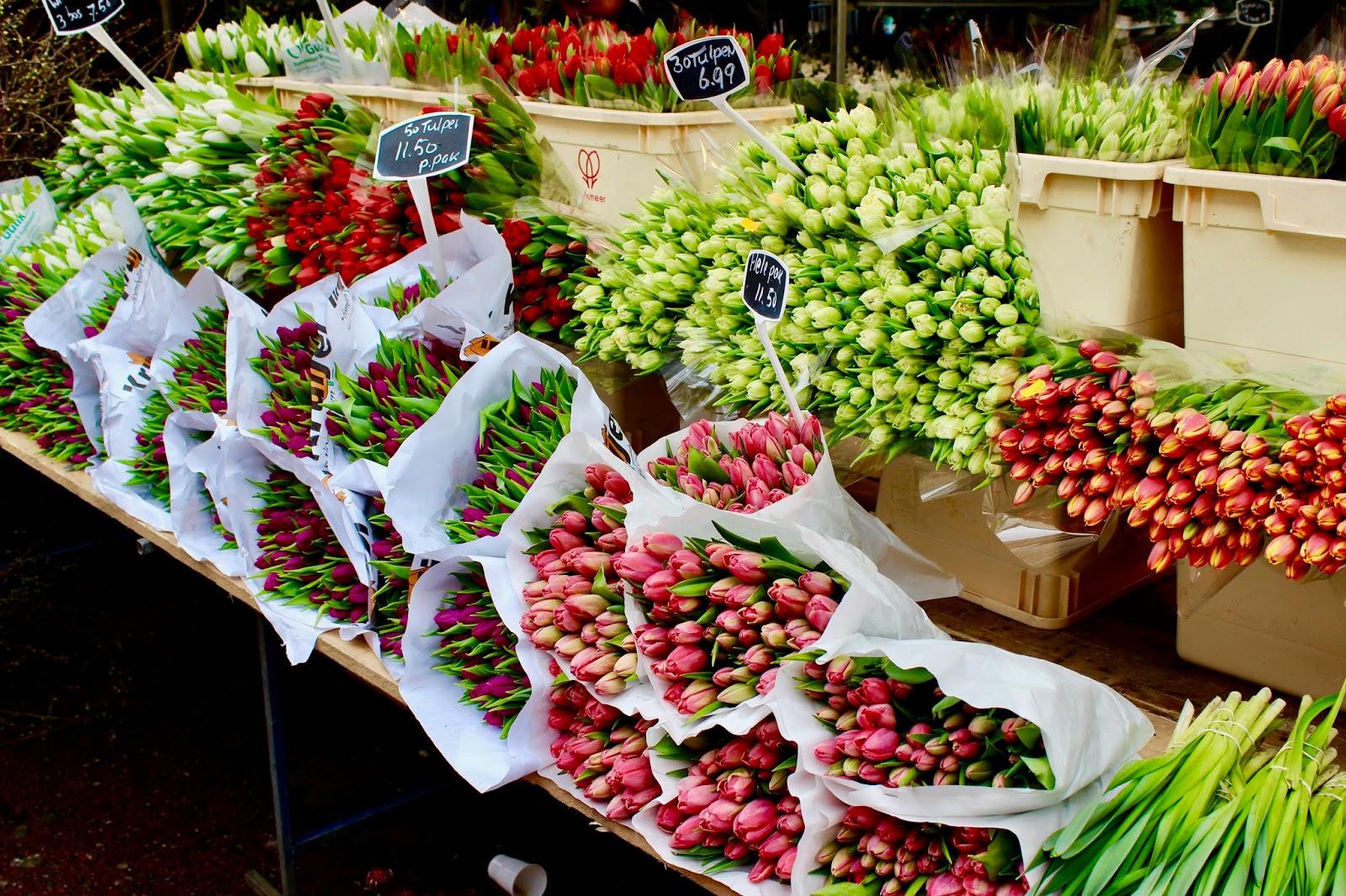 Bloemenmarkt Amsterdam Tulips