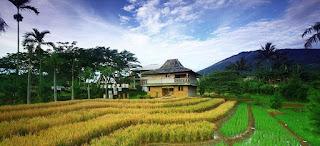 Bentuk Penggunaan Lahan di Pedesaan dan Perkotaan