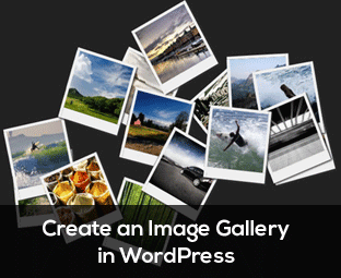 How to Create an Image Gallery in WordPress with Simple Steps