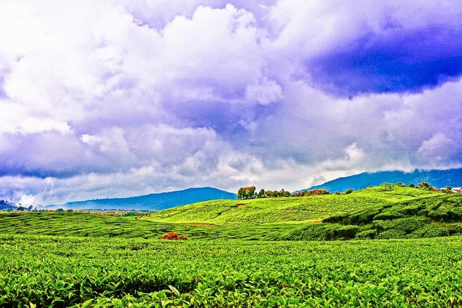 Wisata Daerah Kerinci Jambi Yang Wajib Anda Kunjungi