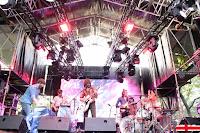 Rufus T. Fireflu Festival Tomavistas