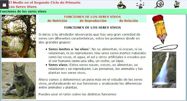 http://ceiploreto.es/sugerencias/juntadeandalucia/Costa21/seres/contenidos/funcio0.html