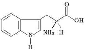 triptofano estrutura quimica