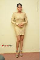 Actress Pooja Roshan Stills in Golden Short Dress at Box Movie Audio Launch  0143.JPG
