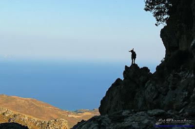 Manikas-Skaloti Gorge - Φαράγγι Μανικά-Σκαλωτής
