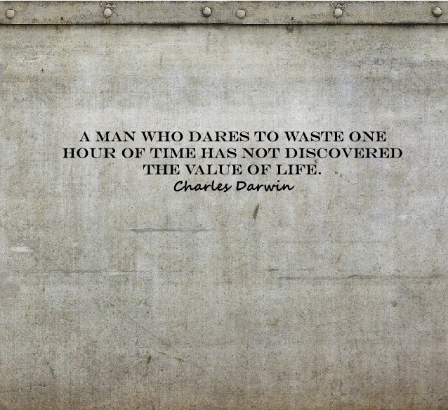 A man who dares to waste one hour of time has not discovered the value of life